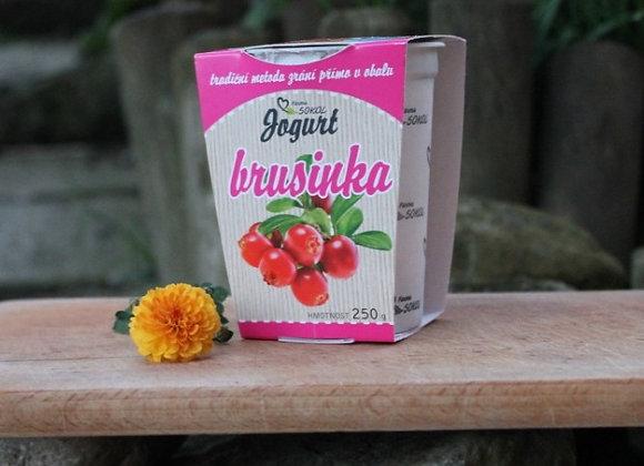 Brusinkový Jogurt 250g