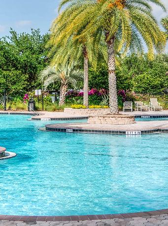 palm-trees-paradise-pool-261105.jpg