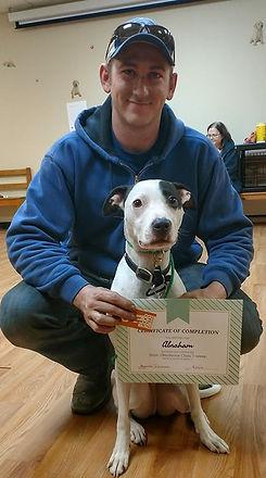 Rescue dog, Pit bull/pitbull mix, aruba dog in group class training