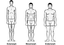 Genetics can we change our body shape?