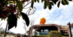 카카오프렌즈 라이언 라이언조형물 에어바이블