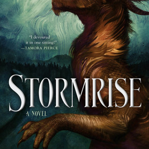 Blog Tour: Stormrise by Jillian Boehme with Exclusive Interview + Giveaway