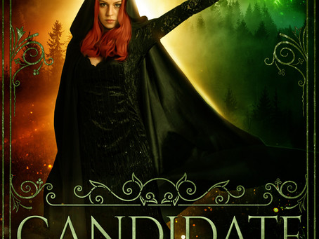 Book Review: Candidate By Rachel E. Carter