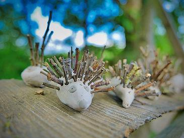 Forest School Hedgehogs.jpeg