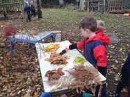 Leaf sorting in Forest School_.jpg