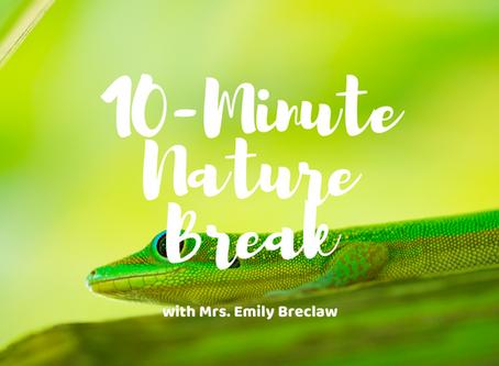 Wednesday, April 8 - Nature Break