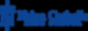 Academic Logo blue.png