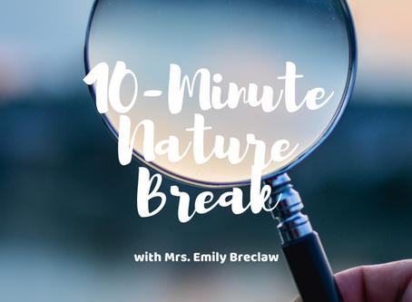 Monday, April 6 - Nature Break