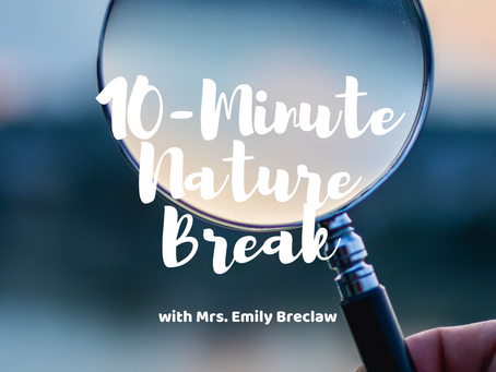 Monday, April 6 - Nature Break