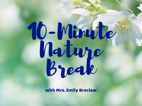 Tuesday, March 24 - Nature Break