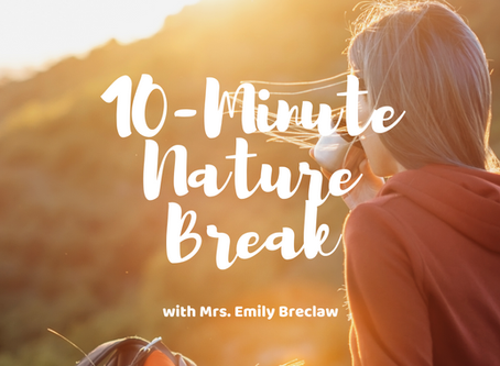 Tuesday, March 31 - Nature Break