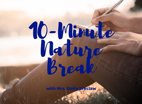 Tuesday, May 12 - Nature Break