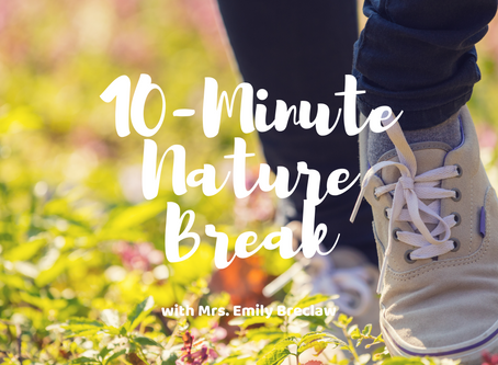 Wednesday, May 6 - Nature Break