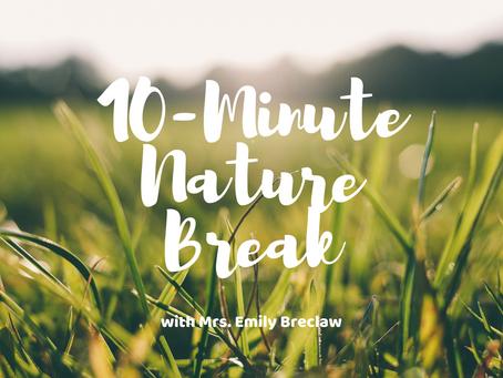 Wednesday, March 18 - Nature Break