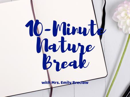Monday, March 23 - Nature Break