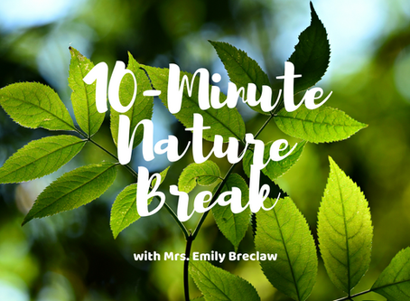 Friday, May 1 - Nature Break