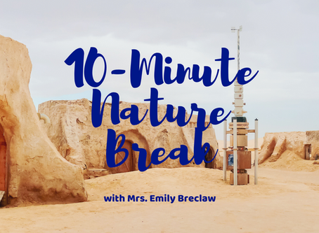 Monday, May 4 - Nature Break