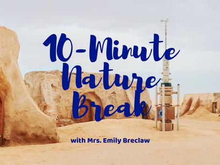 Monday, May 4 - Nature Break