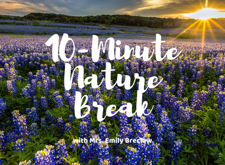 Friday, April 3 - Nature Break