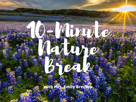 Friday, April 3 - Nature Break