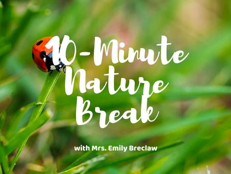 Monday, May 11 - Nature Break