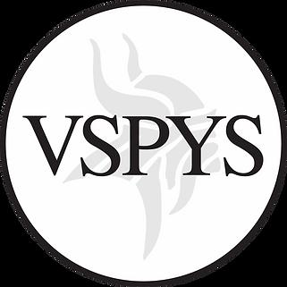 VSPYS(1).png