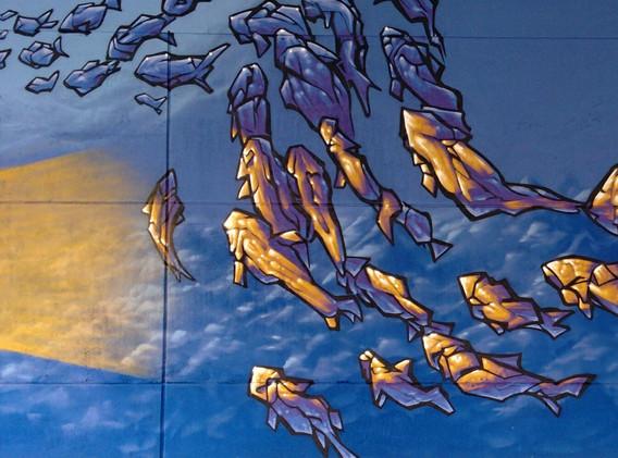 zoomfish2.jpg