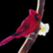 cardinal-clipart.png