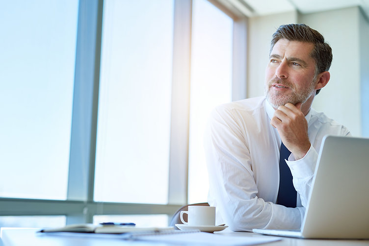 Attractive mature business executive wit