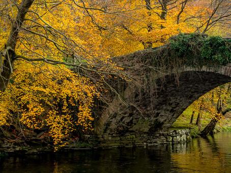 Welsh autumn colour