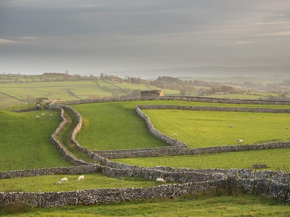 Malham Pastures