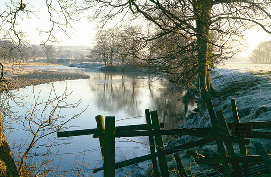 Frosty Morning, River Wharfe