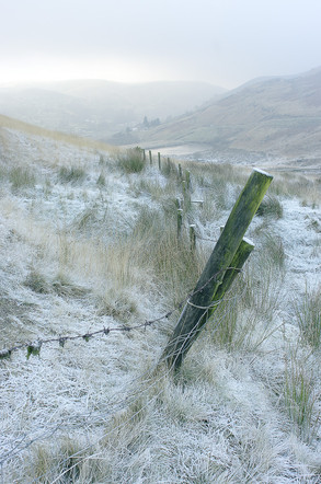Pennine Frost I
