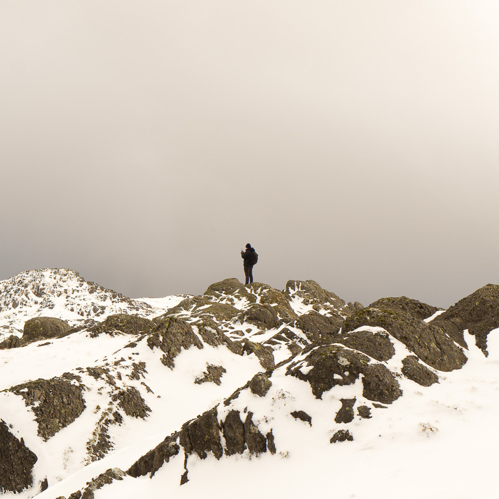One of my walking companions on Pavey Ark summit