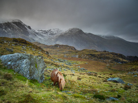 Turned back by bad weather - mountain shots from Snowdonia