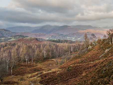 The last of Holme Fell
