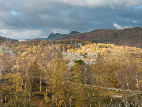 Holme Fell part three