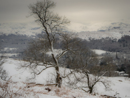 Ambleside to Troutbeck, 17th January 2016