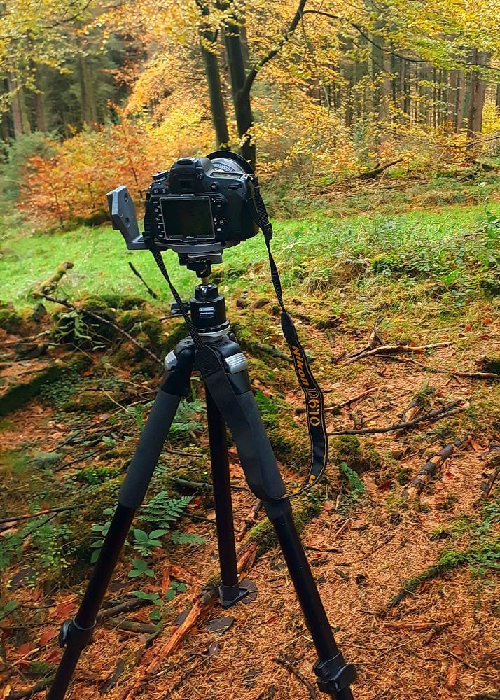 Nikon d610 on tripod, fits just fine