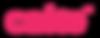 pink cake word logo.png