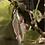Thumbnail: Dreadlock bead Feather