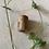 Thumbnail: Dreadlock kraal hout met bast