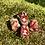 Thumbnail: Dreadbead Pomgranate