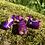 Thumbnail: Dreadbead Fruits of the Forest
