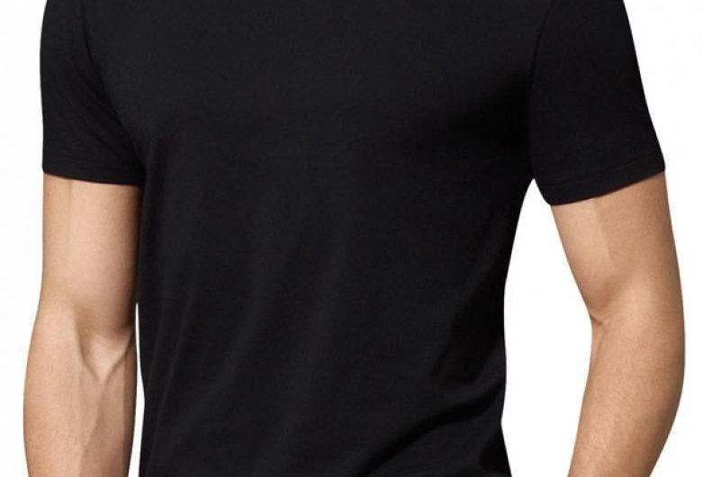 Polo Ralph Lauren Slim Fit V-Nech T-Shirt P20