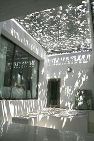 Transparant dak