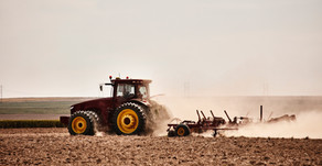 SAP S/4HANA: The Sustainable and Efficient Solution for the Agriculture Industry