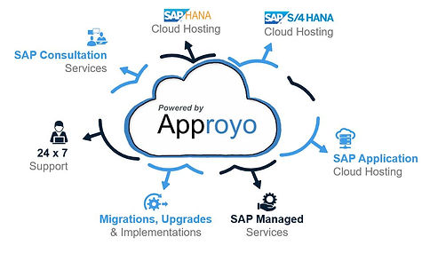 What Approyo does for your business with SAP systems