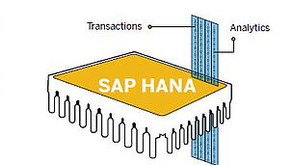 Can my application provide analytics while updating the same copy of data in real time with SAP HANA