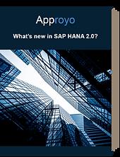 SAP HANA 2.0 Approyo